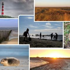 uploads/users/51/collage-ameland.jpg